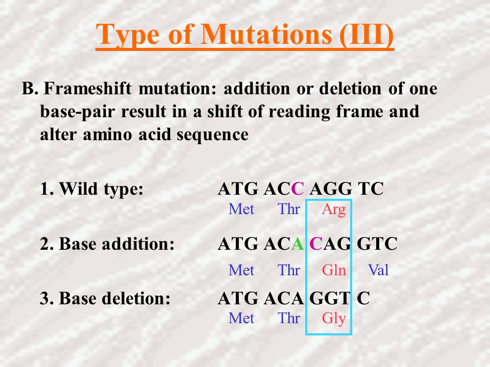 Type of Mutations (III) B. Frameshift mutation: addition or deletion of one base-pair result in a shift of reading frame and alter amino acid sequence