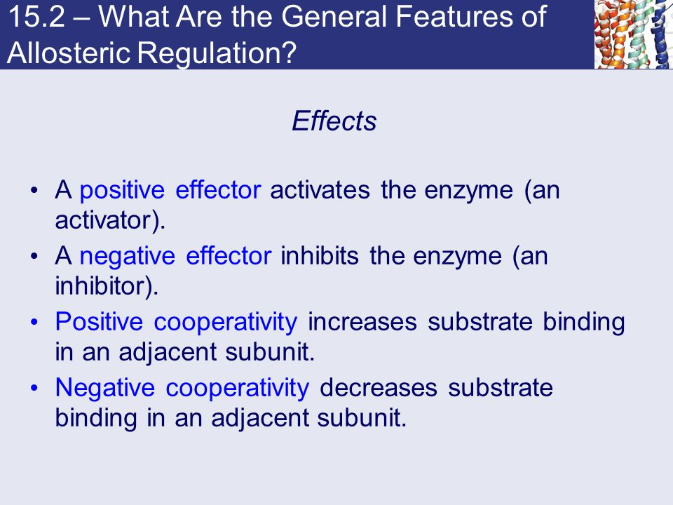15.2 – What Are the General Features of Allosteric Regulation? Effects A positive effector activates the enzyme (an activator). A negative effector in