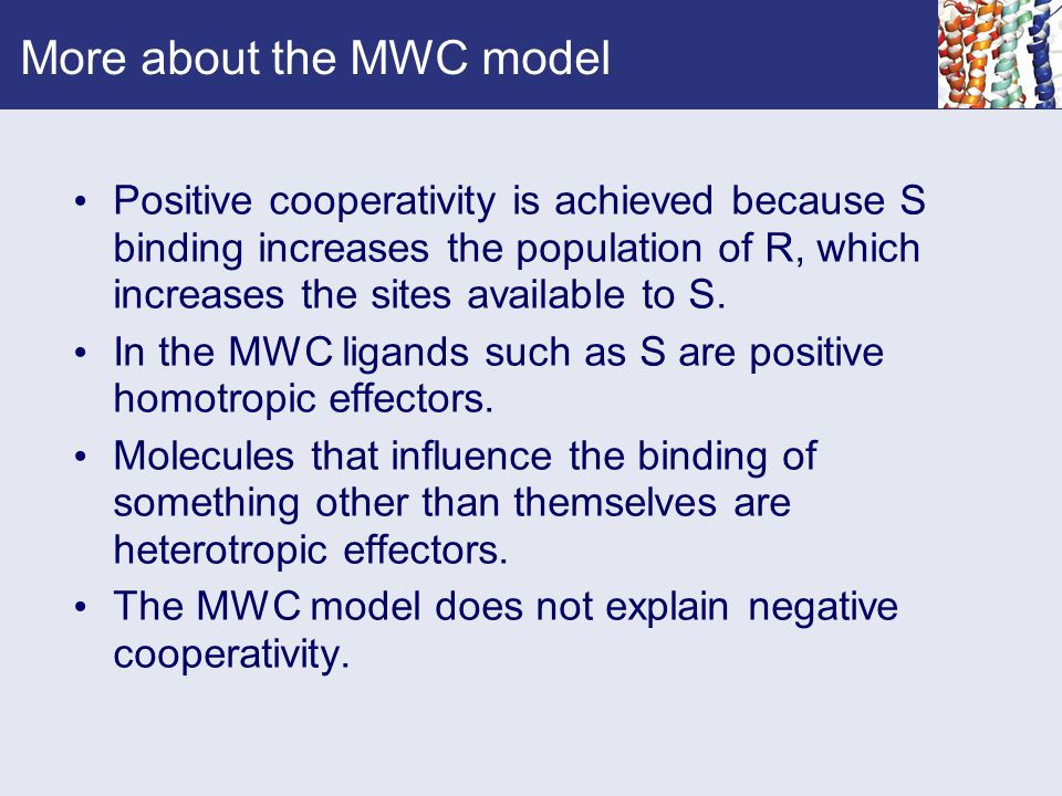 More about the MWC model Positive cooperativity is achieved because S binding increases the population of R, which increases the sites available to S.
