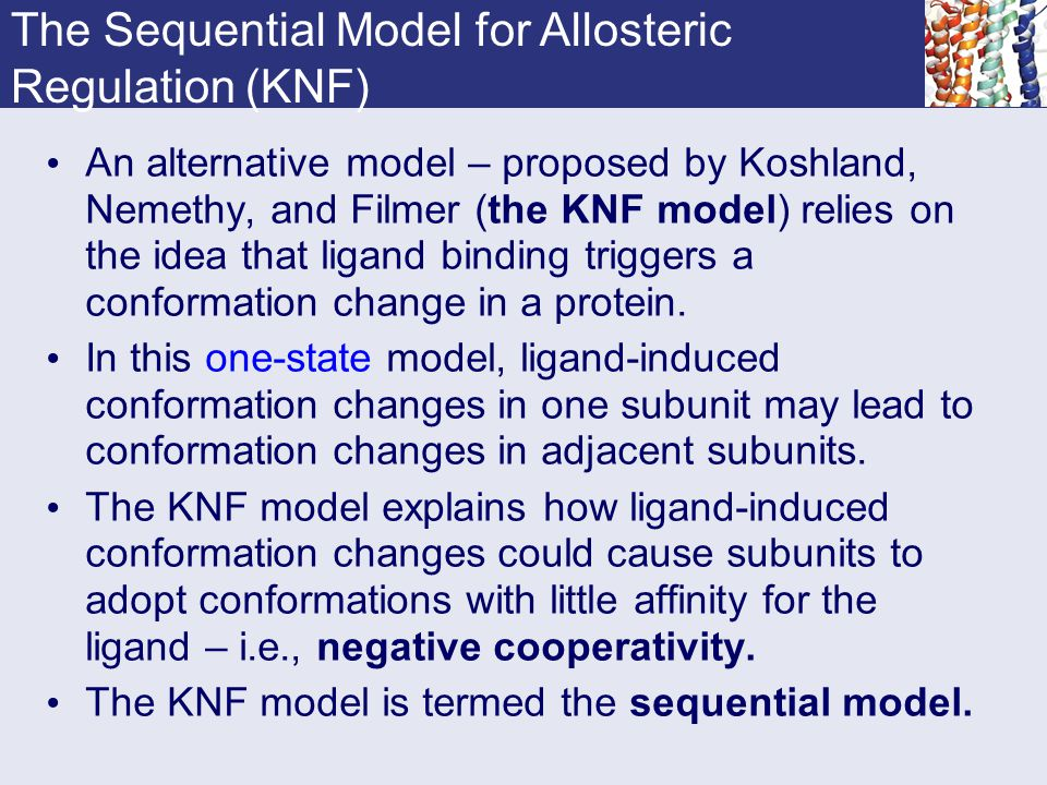 An alternative model – proposed by Koshland, Nemethy, and Filmer (the KNF model) relies on the idea that ligand binding triggers a conformation change