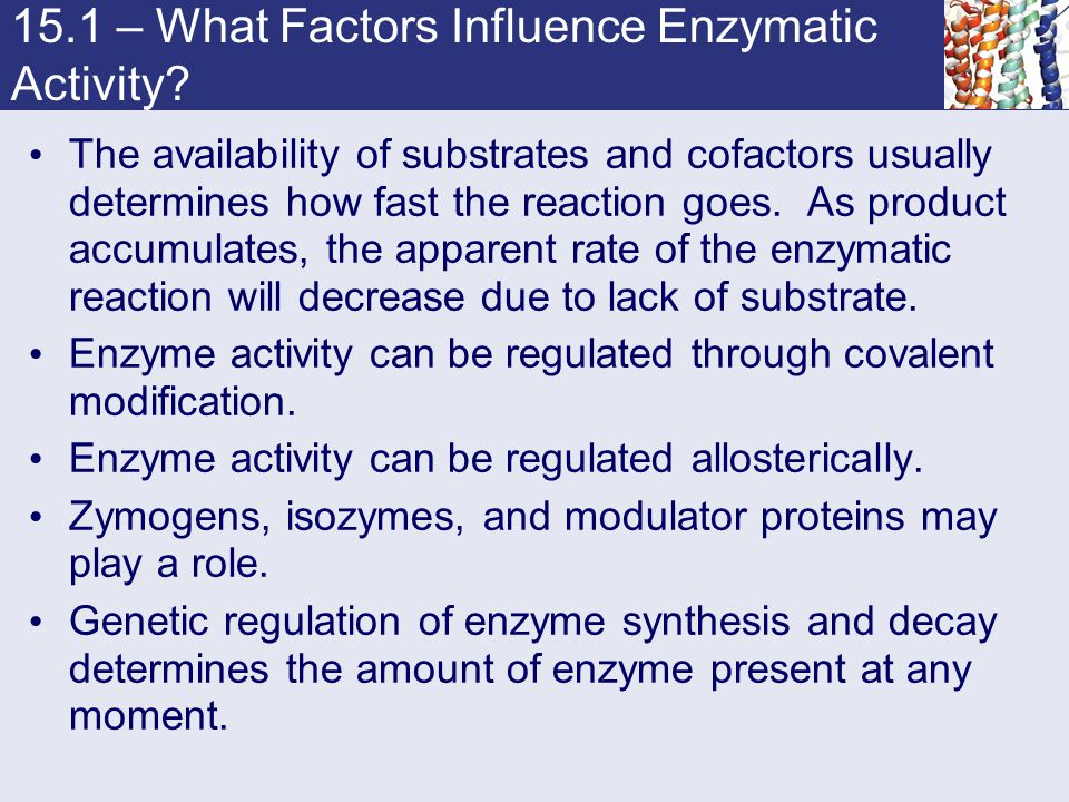 15.1 – What Factors Influence Enzymatic Activity? The availability of substrates and cofactors usually determines how fast the reaction goes. As produ