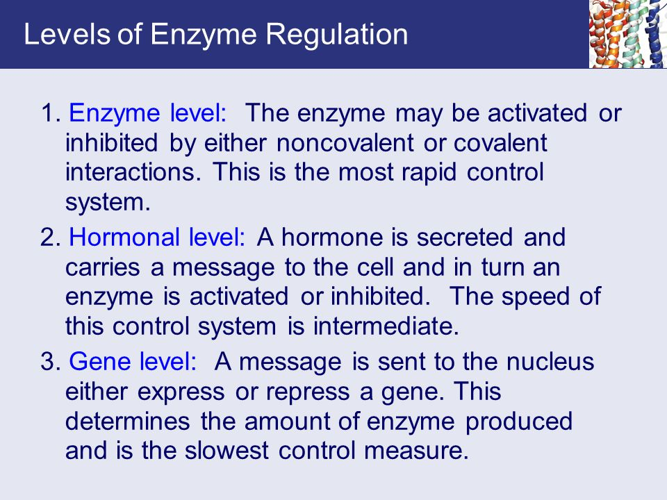 Levels of Enzyme Regulation 1. Enzyme level: The enzyme may be activated or inhibited by either noncovalent or covalent interactions. This is the most