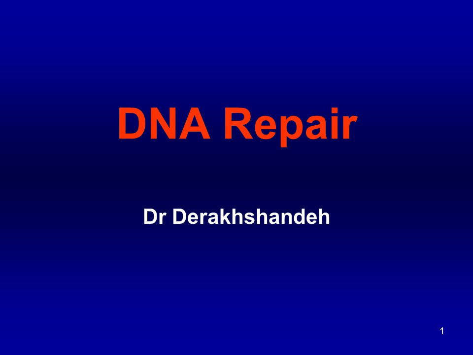 2 For DNA information must be transmitted intact to daughter cells