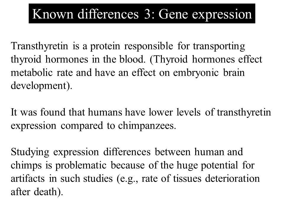 Known differences 3: Gene expression Transthyretin is a protein responsible for transporting thyroid hormones in the blood. (Thyroid hormones effect m