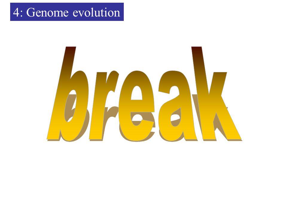 4: Genome evolution
