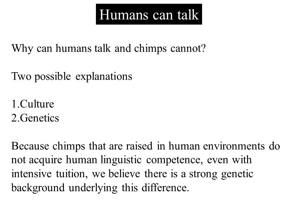 Humans can talk Why can humans talk and chimps cannot.