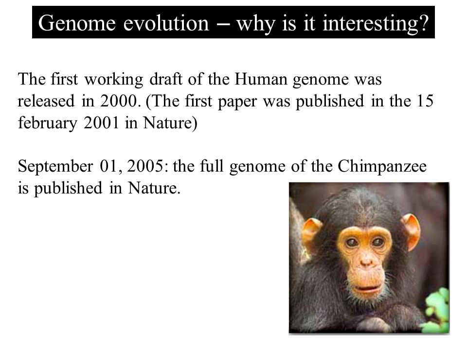 Genome evolution – why is it interesting.
