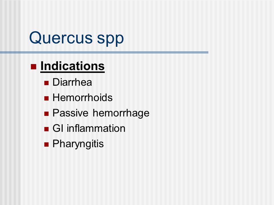 Quercus spp Indications Diarrhea Hemorrhoids Passive hemorrhage GI inflammation Pharyngitis