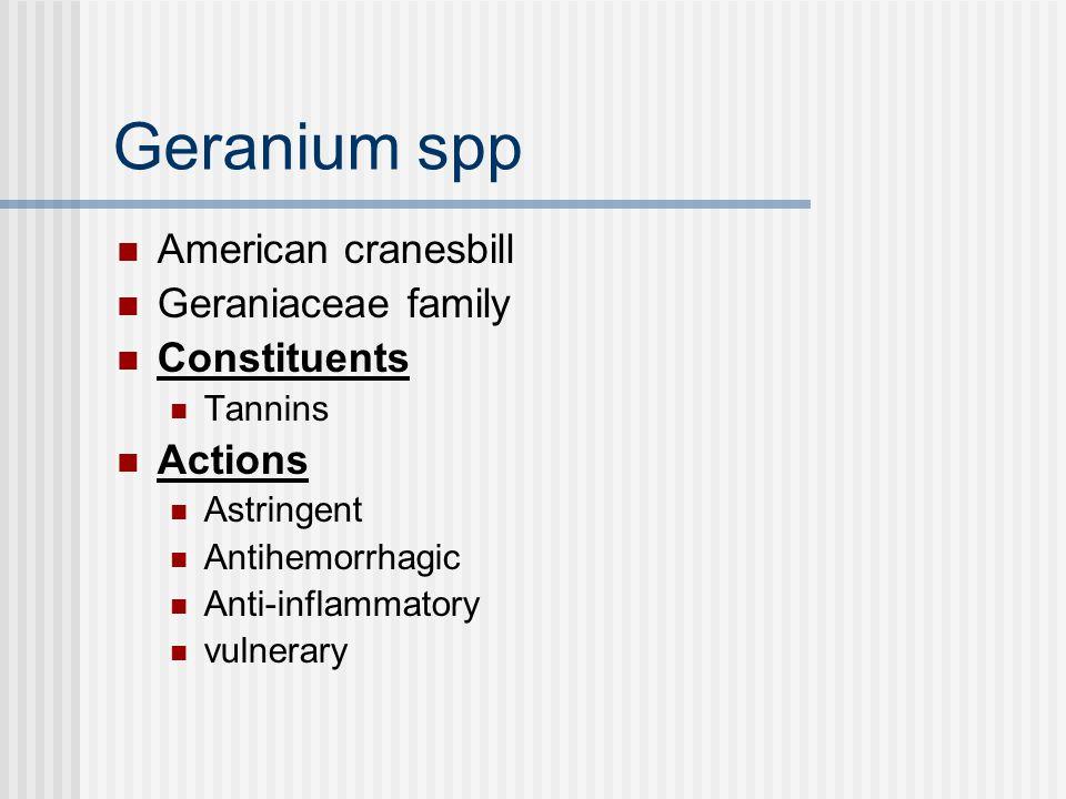 Geranium spp Indications Diarrhea Passive hemorrhage Gastric ulcer GI inflammation Wounds