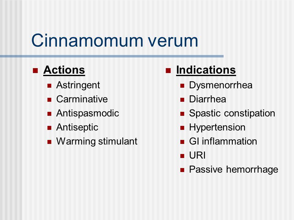 Cinnamomum verum Actions Astringent Carminative Antispasmodic Antiseptic Warming stimulant Indications Dysmenorrhea Diarrhea Spastic constipation Hypertension GI inflammation URI Passive hemorrhage