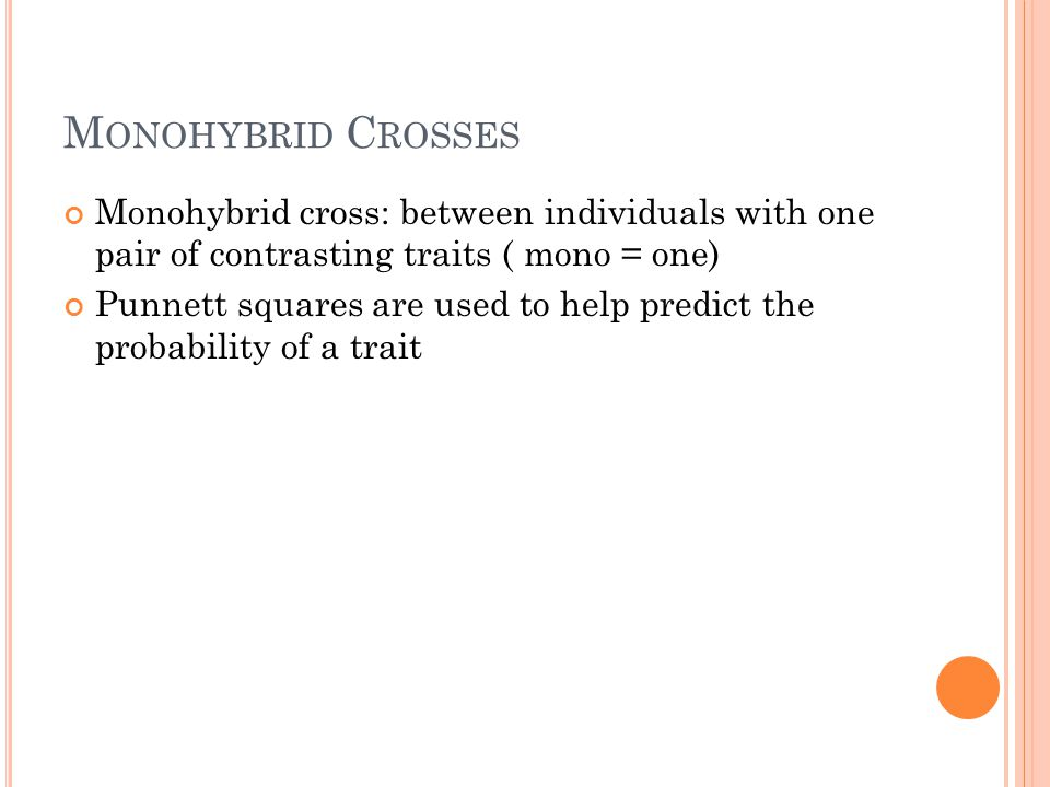 M ONOHYBRID C ROSSES Monohybrid cross: between individuals with one pair of contrasting traits ( mono = one) Punnett squares are used to help predict the probability of a trait
