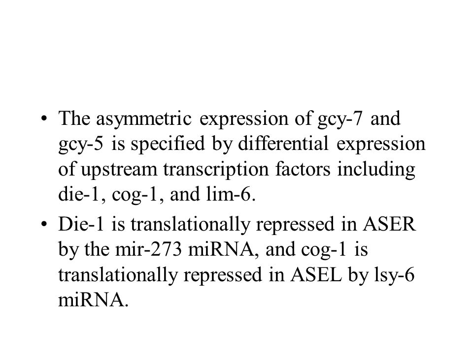 The asymmetric expression of gcy-7 and gcy-5 is specified by differential expression of upstream transcription factors including die-1, cog-1, and lim-6.