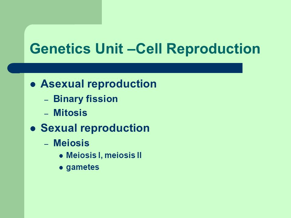 Genetics Unit –Cell Reproduction Asexual reproduction – Binary fission – Mitosis Sexual reproduction – Meiosis Meiosis I, meiosis II gametes
