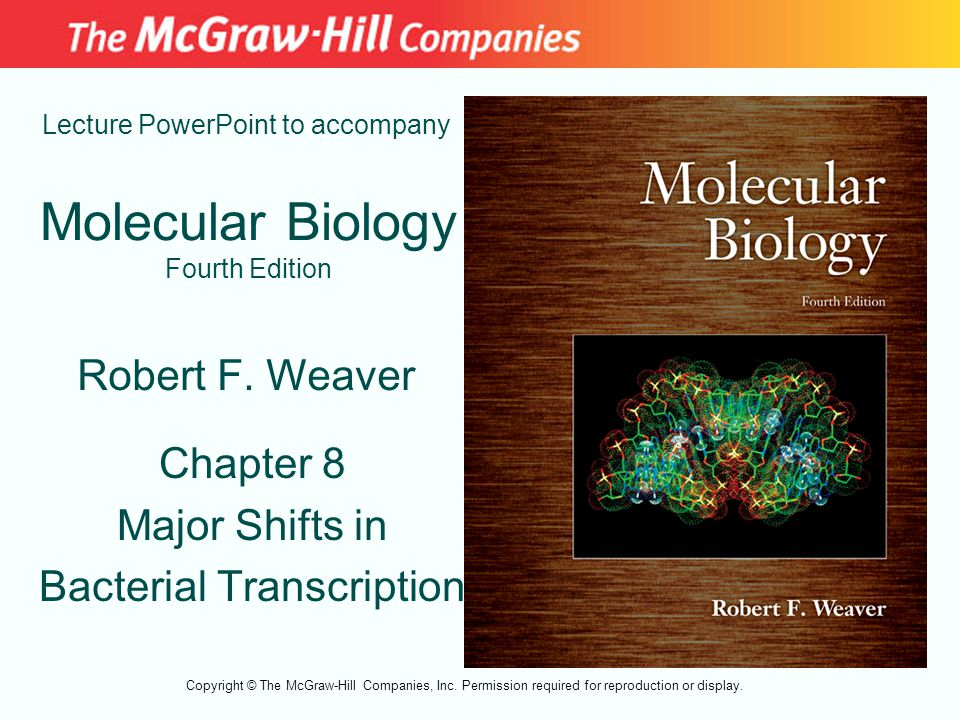 Molecular Biology Fourth Edition Chapter 8 Major Shifts in Bacterial Transcription Lecture PowerPoint to accompany Robert F. Weaver Copyright © The Mc