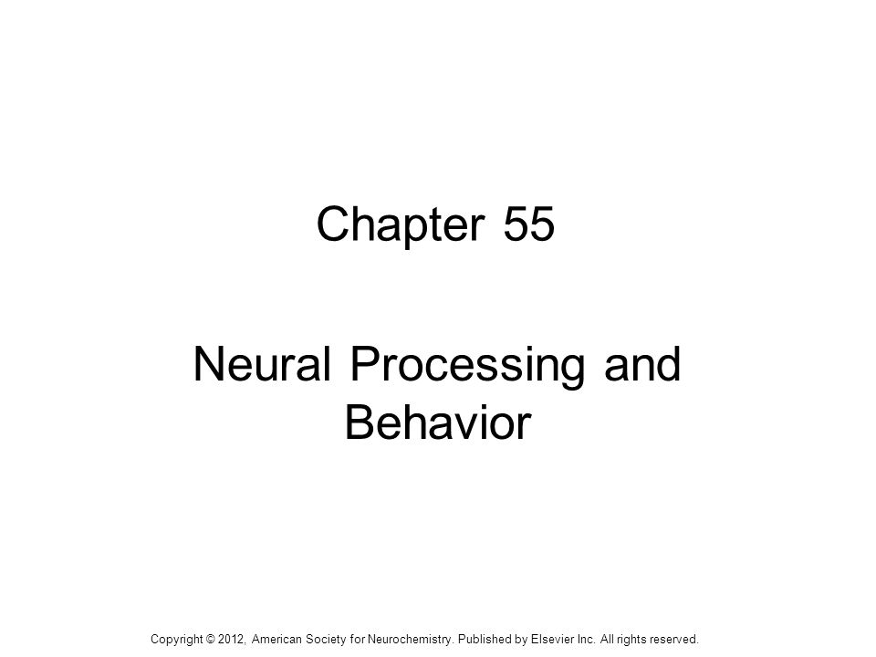 1 Chapter 55 Neural Processing and Behavior Copyright © 2012, American Society for Neurochemistry.