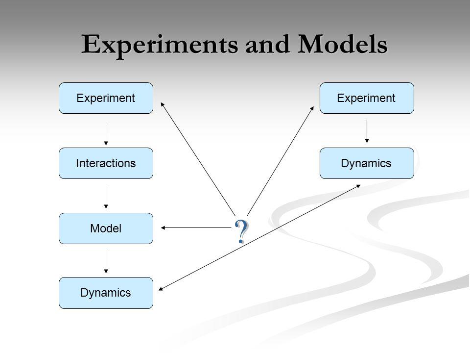 Experiments and Models Experiment Dynamics Interactions Model Dynamics Experiment