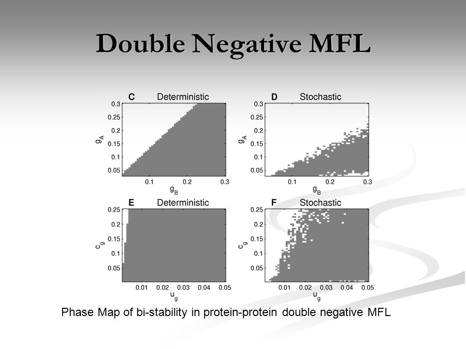 Double Negative MFL Phase Map of bi-stability in protein-protein double negative MFL