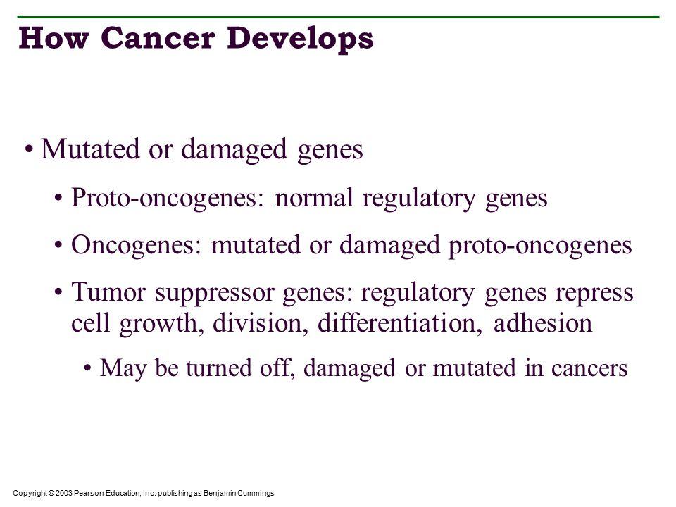 Copyright © 2003 Pearson Education, Inc. publishing as Benjamin Cummings. Carcinogens Table 18.2