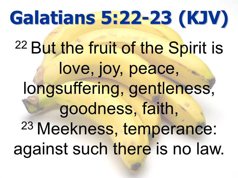Galatians 5:22-23 (KJV) 22 But the fruit of the Spirit is love, joy, peace, longsuffering, gentleness, goodness, faith, 23 Meekness, temperance: against such there is no law.