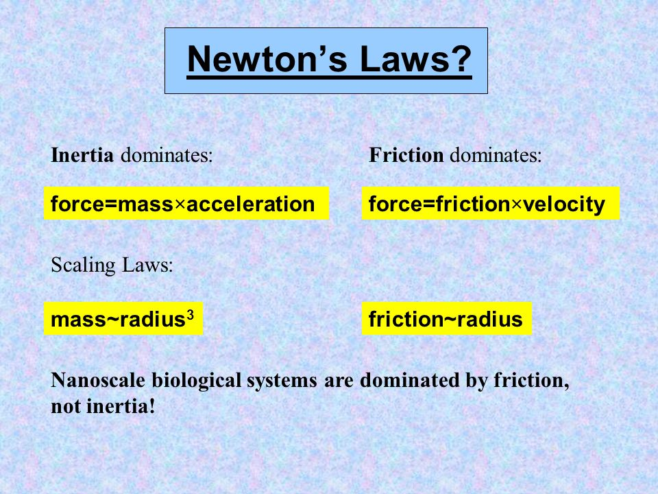 Newton's Laws.