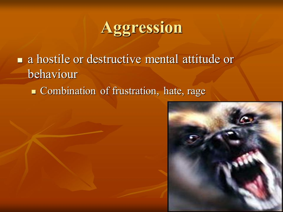 Aggression a hostile or destructive mental attitude or behaviour a hostile or destructive mental attitude or behaviour Combination of frustration, hate, rage Combination of frustration, hate, rage