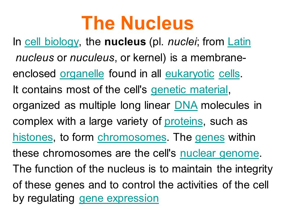 The Nucleus In cell biology, the nucleus (pl.
