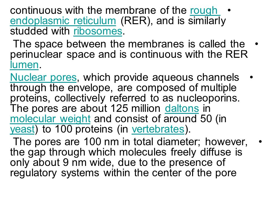 continuous with the membrane of the rough endoplasmic reticulum (RER), and is similarly studded with ribosomes.rough endoplasmic reticulumribosomes The space between the membranes is called the perinuclear space and is continuous with the RER lumen.