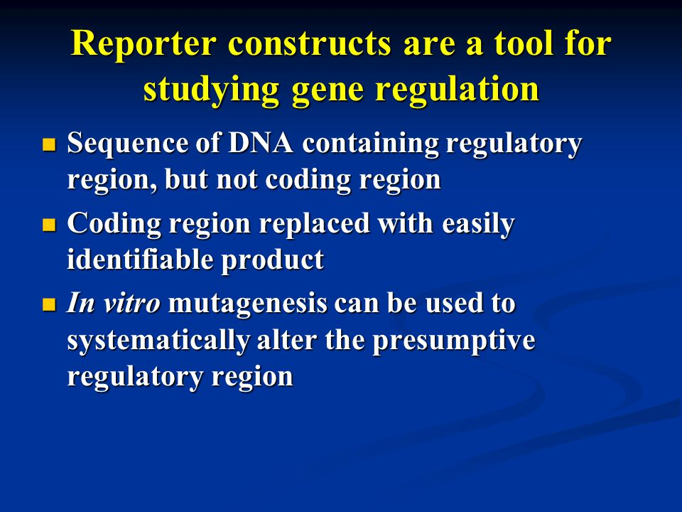 Reporter constructs are a tool for studying gene regulation Sequence of DNA containing regulatory region, but not coding region Sequence of DNA containing regulatory region, but not coding region Coding region replaced with easily identifiable product Coding region replaced with easily identifiable product In vitro mutagenesis can be used to systematically alter the presumptive regulatory region In vitro mutagenesis can be used to systematically alter the presumptive regulatory region