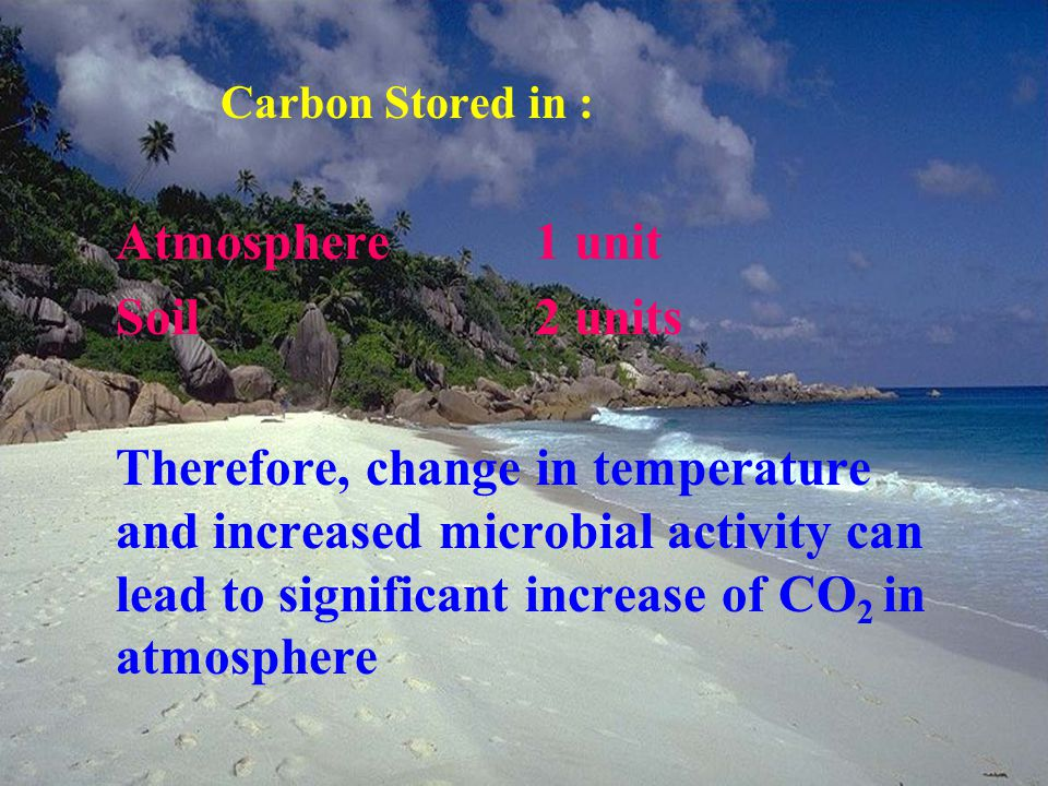 Carbon Stored in : Atmosphere1 unit Soil2 units Therefore, change in temperature and increased microbial activity can lead to significant increase of CO 2 in atmosphere