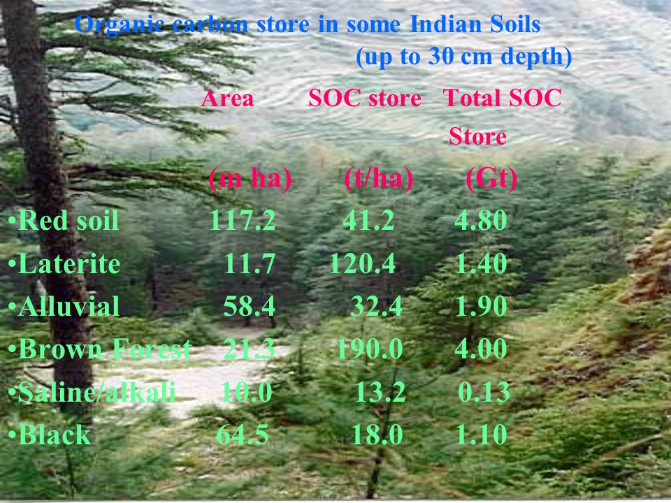 Organic carbon store in some Indian Soils (up to 30 cm depth) Area SOC store Total SOC Store (m ha) (t/ha) (Gt) Red soil117.241.2 4.80 Laterite 11.7 120.4 1.40 Alluvial 58.4 32.4 1.90 Brown Forest 21.3 190.0 4.00 Saline/alkali 10.0 13.2 0.13 Black 64.5 18.0 1.10