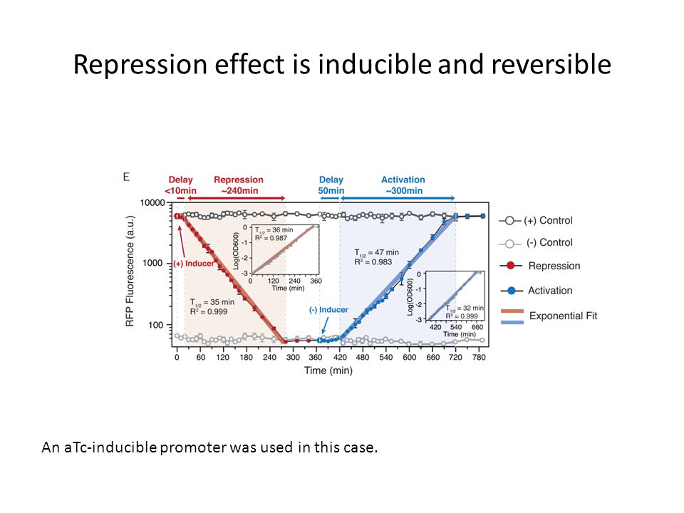Repression effect is inducible and reversible An aTc-inducible promoter was used in this case.
