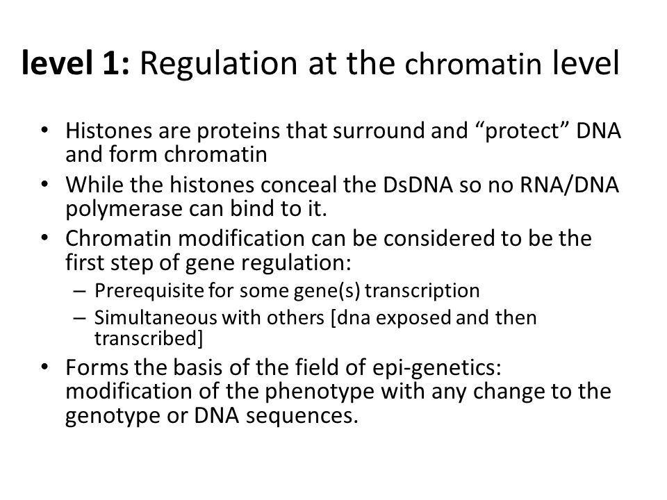 level 1: Regulation at the chromatin level Histones are proteins that surround and protect DNA and form chromatin While the histones conceal the DsDNA so no RNA/DNA polymerase can bind to it.
