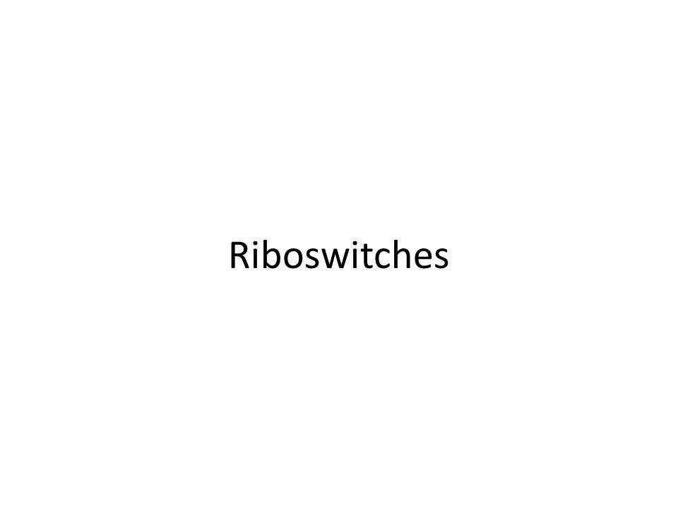 Riboswitches