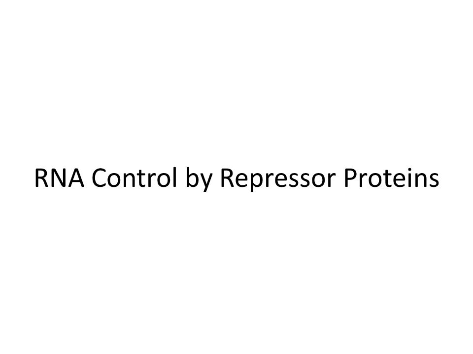 RNA Control by Repressor Proteins