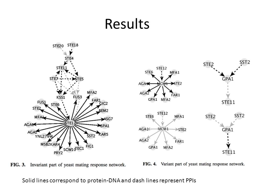 Results Solid lines correspond to protein-DNA and dash lines represent PPIs