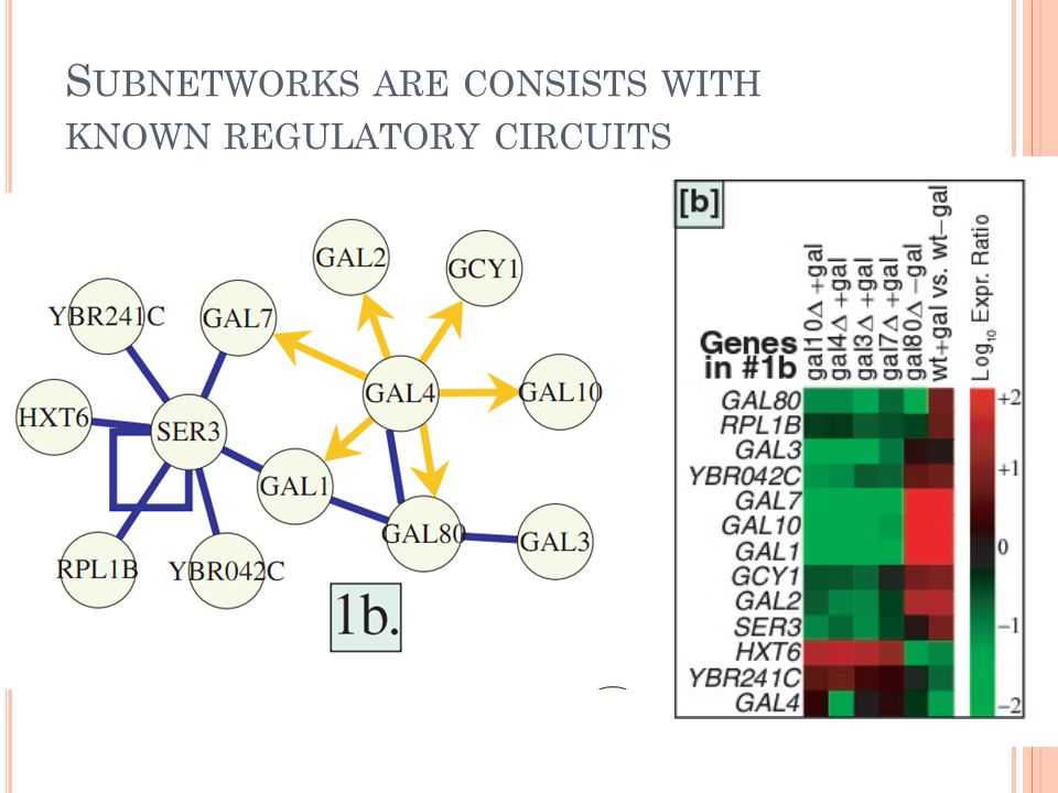 S UBNETWORKS ARE CONSISTS WITH KNOWN REGULATORY CIRCUITS