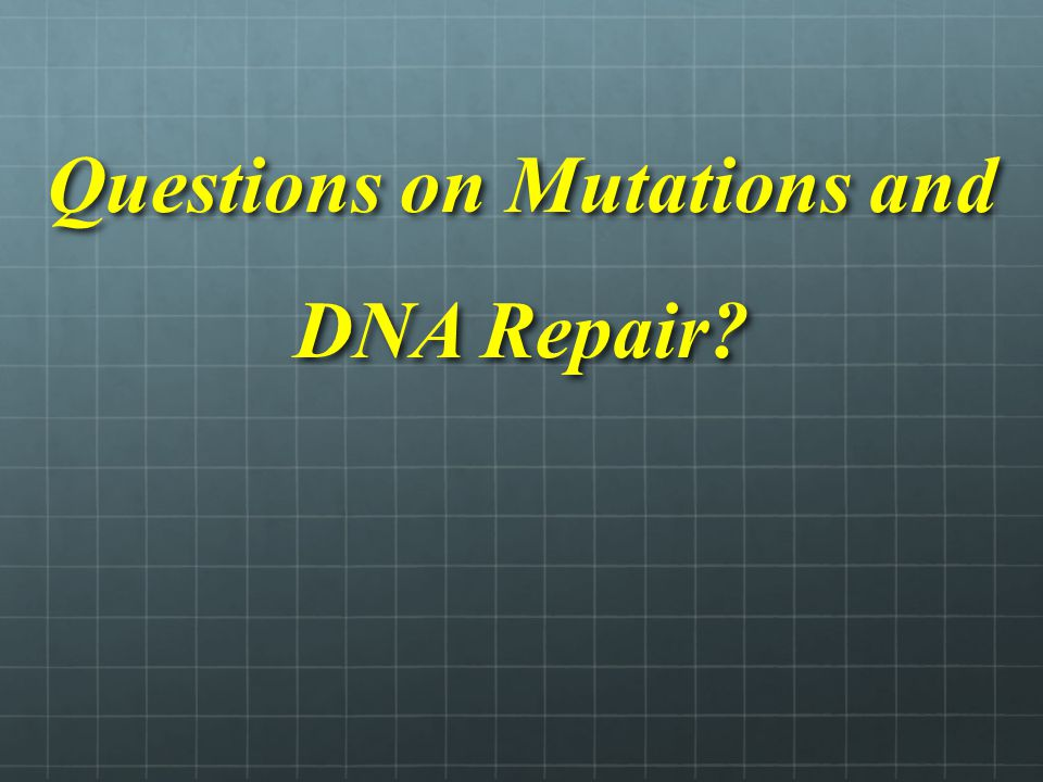Questions on Mutations and DNA Repair?