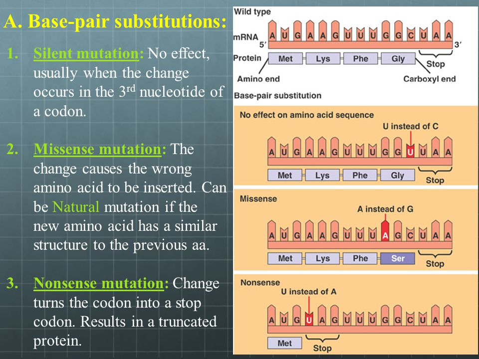 A. Base-pair substitutions: 1.Silent mutation: No effect, usually when the change occurs in the 3 rd nucleotide of a codon. 2.Missense mutation: The c