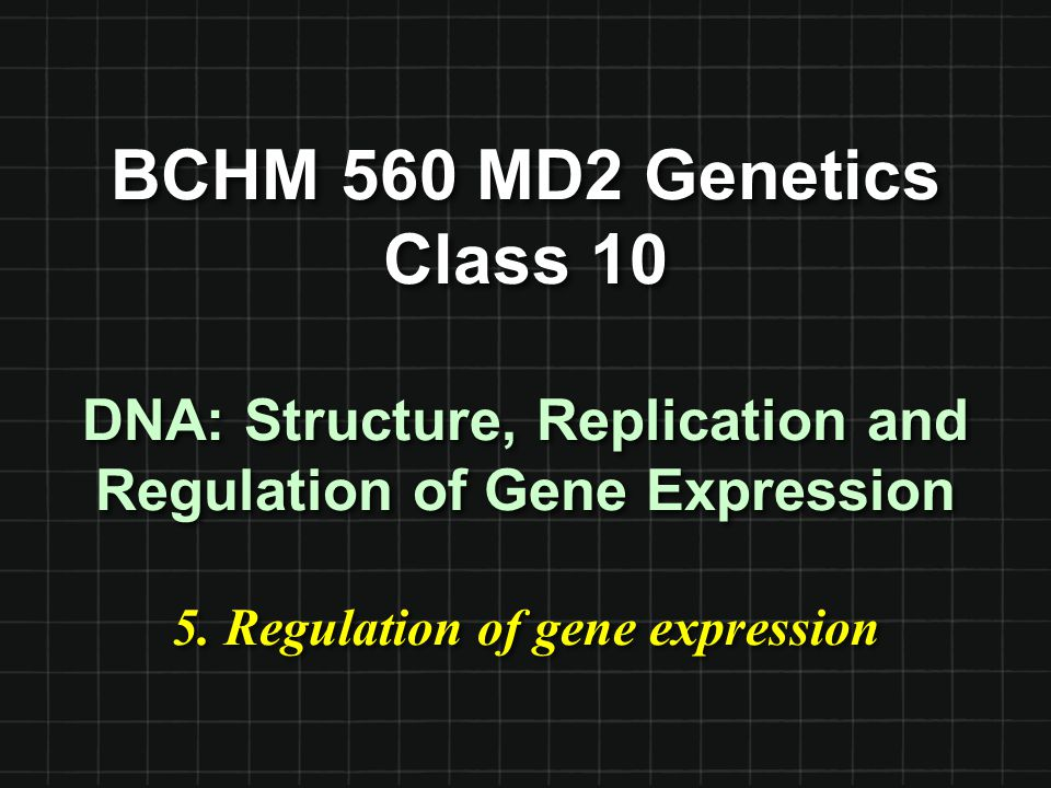 BCHM 560 MD2 Genetics Class 10 DNA: Structure, Replication and Regulation of Gene Expression 5. Regulation of gene expression