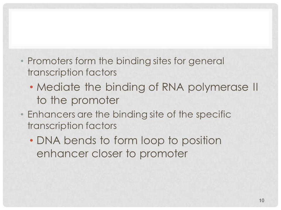 10 Promoters form the binding sites for general transcription factors Mediate the binding of RNA polymerase II to the promoter Enhancers are the bindi
