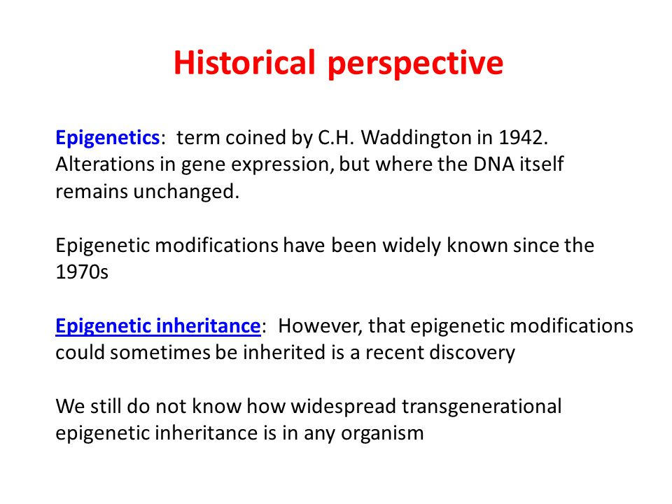 Historical perspective Epigenetics: term coined by C.H. Waddington in 1942. Alterations in gene expression, but where the DNA itself remains unchanged