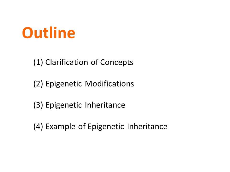 Outline (1) Clarification of Concepts (2) Epigenetic Modifications (3) Epigenetic Inheritance (4) Example of Epigenetic Inheritance