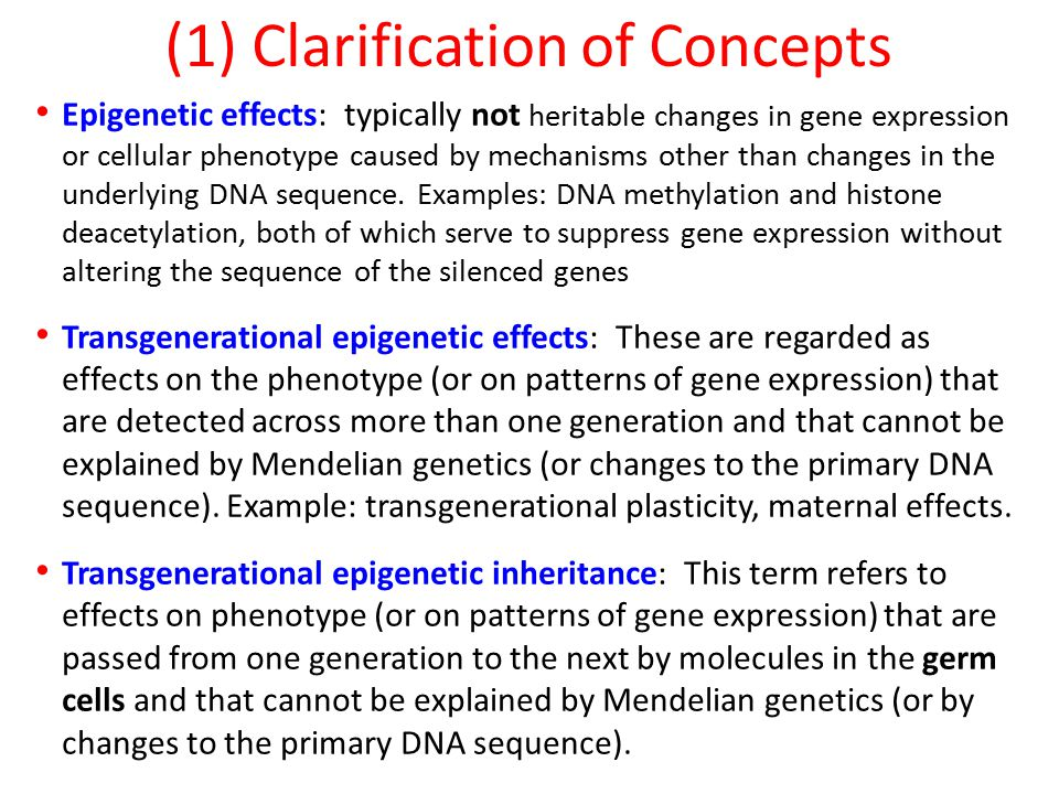 Epigenetic effects: typically not heritable changes in gene expression or cellular phenotype caused by mechanisms other than changes in the underlying