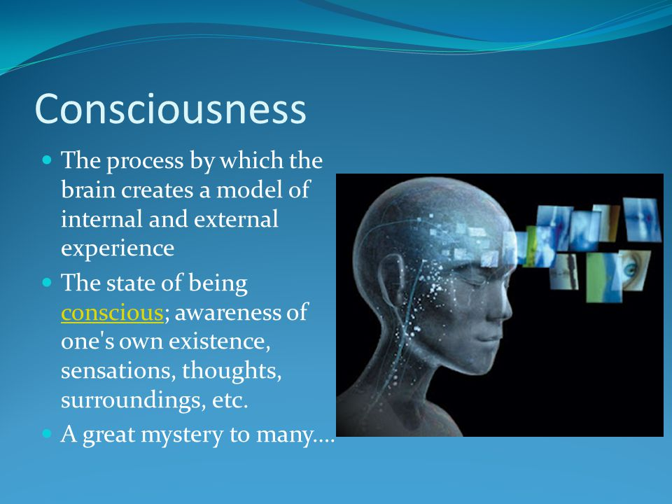 Consciousness The process by which the brain creates a model of internal and external experience The state of being conscious; awareness of one's own