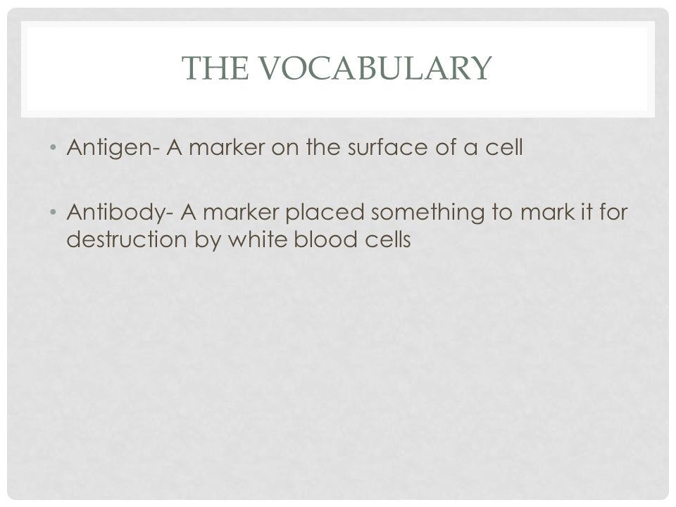 THE VOCABULARY Antigen- A marker on the surface of a cell Antibody- A marker placed something to mark it for destruction by white blood cells