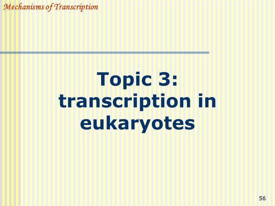 56 Topic 3: transcription in eukaryotes Mechanisms of Transcription