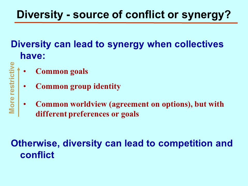 Diversity - source of conflict or synergy.