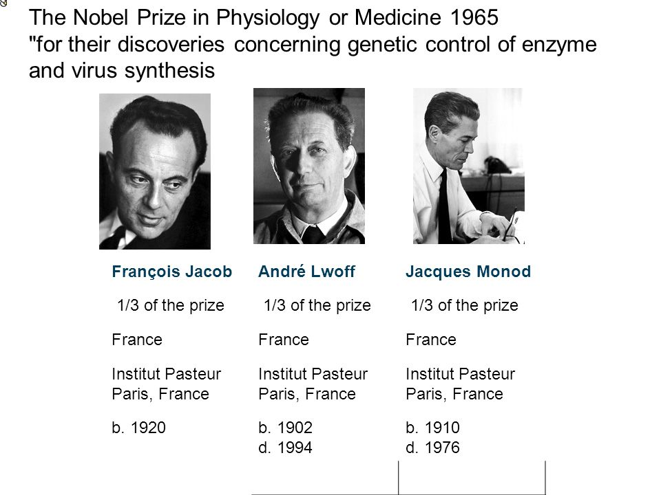 The Nobel Prize in Physiology or Medicine 1965 for their discoveries concerning genetic control of enzyme and virus synthesis François JacobAndré LwoffJacques Monod 1/3 of the prize France Institut Pasteur Paris, France b.