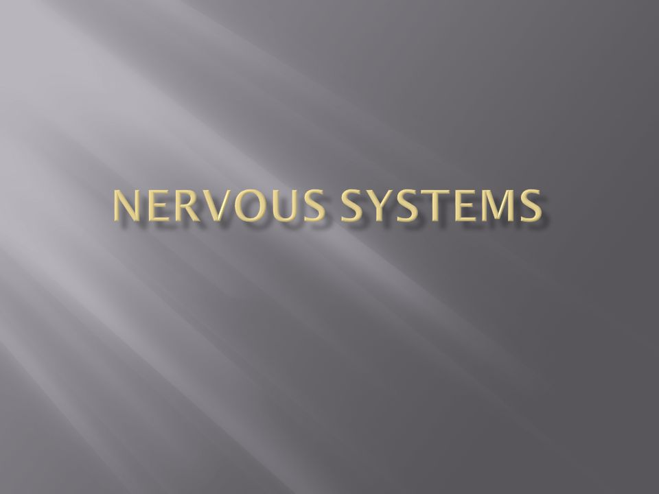  The nerve cell or neuron, is the functional unit of the nervous system.