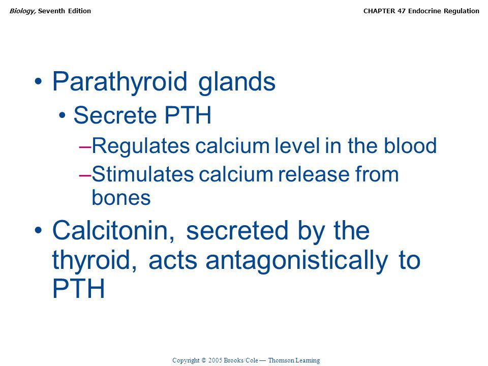 Copyright © 2005 Brooks/Cole — Thomson Learning Biology, Seventh EditionCHAPTER 47 Endocrine Regulation Parathyroid glands Secrete PTH –Regulates calc